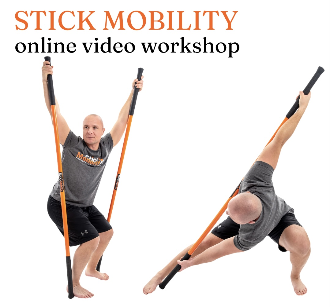 Stick Mobility video workshop